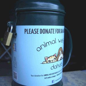 Animal Welfare Dahab Donation