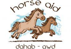 Horse Aid Dahab